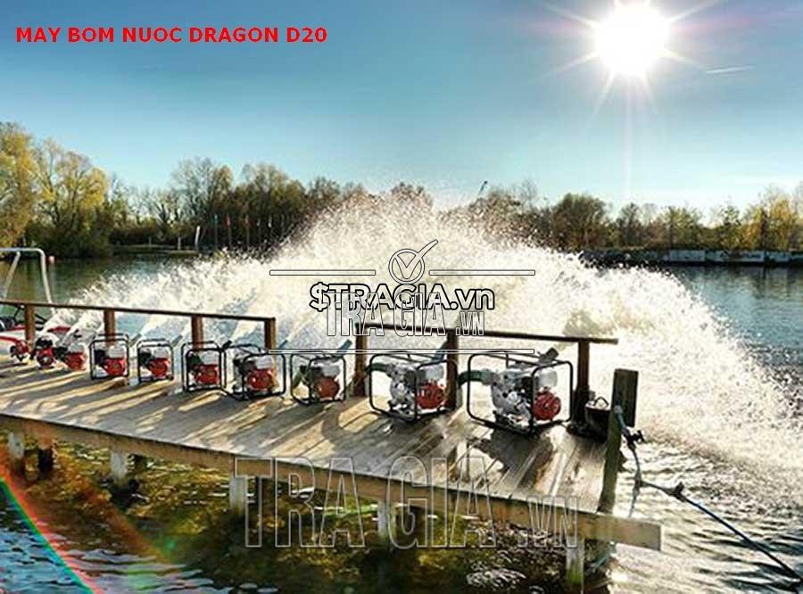 Ứng dụng máy bơm DRAGON-D20