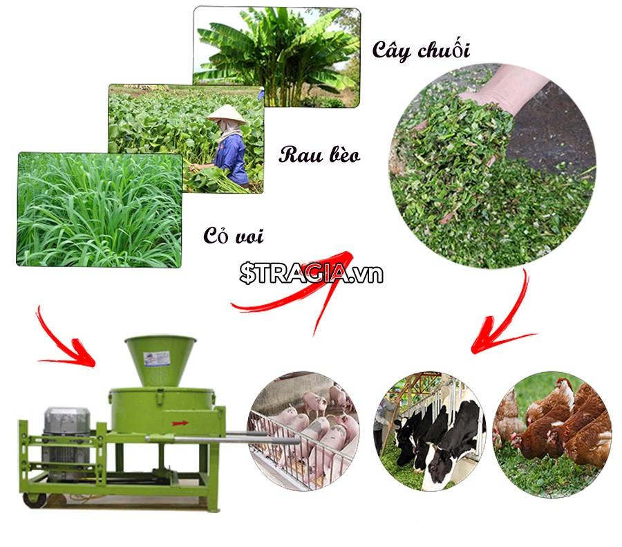 Công dụng của máy băm thái chuối mini TK 2019