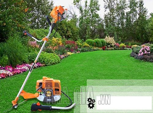 Máy cắt cỏ Dragon chính hãng